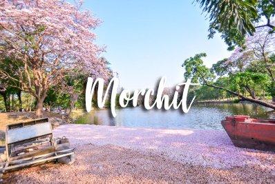 Morchit